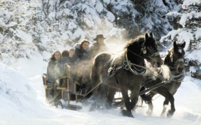 Horse drawn sleigh rides in Obertauern