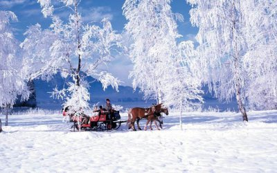 Horse drawn sleigh rides in wintry Obertauern